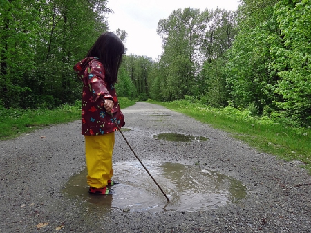 Puddles And Sticks